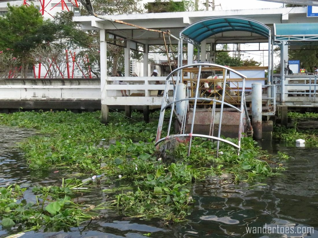 Yep, another collapsed water taxi dock.  Bangkok Chao Phraya Water Taxi