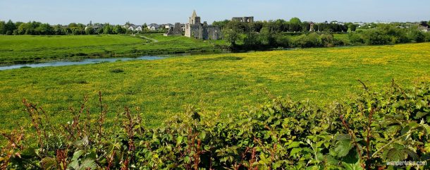 Trim Ireland, the home of Trim Castle of Braveheart fame and many other ruins along the Trim Castle River Walk. | Priory of St. John the Baptist | Parish Church in Newtown-Clonbun | Cathedral of St. Peter and Paul | Trim Castle | Trim Castle History | St. John's Castle