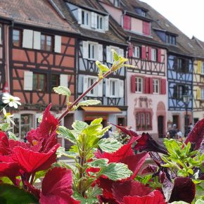 Beautiful and Easy Day Trips from Strasbourg France