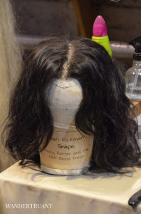 Snape's Wig worn by Alan Rickman