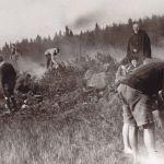 Hohen Meißner - 1913 - Ni cigarette, ni alcohol, l'abstinence règne à la fête Image: Archiv der deutschen Jugendbewegung, Burg Ludwigstein