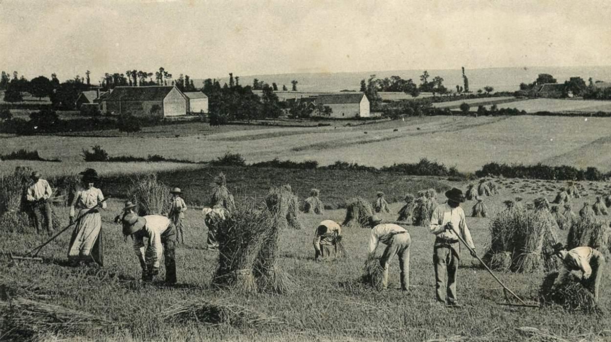 Les paysans et nous - Routes - Wandervogel