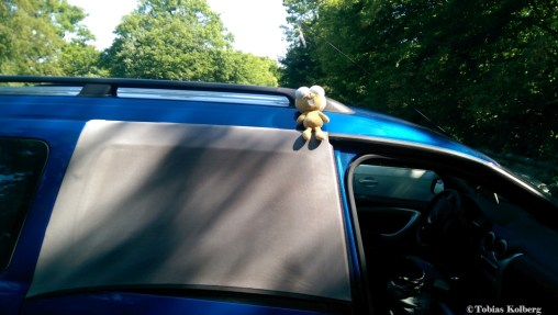Zurück am Auto
