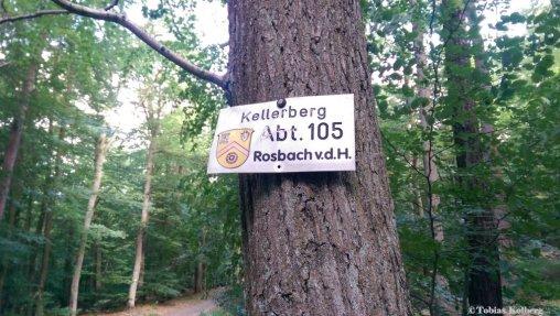 Wandern_Rosbach_Steinbruch_Rundweg_20140619_Tobias_029