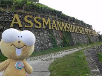 Wandern_Assmannshaeuser_Hoellenberg_20140811_Tobias_028