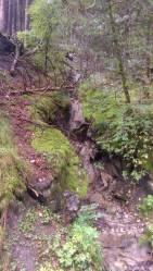 Wandern_PwC_Gipfelstuermer_2014_Tag2_Tobias_009