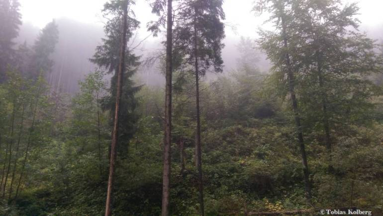Wandern_PwC_Gipfelstuermer_2014_Tag2_Tobias_015