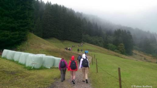 Wandern_PwC_Gipfelstuermer_2014_Tag2_Tobias_023