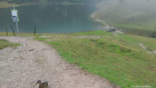 Wandern_PwC_Gipfelstuermer_2014_Tag2_Tobias_078