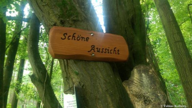 Wandern_Schaecherbachtour_20140903_Tobias_007