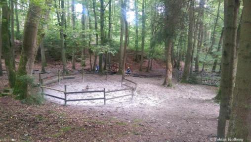 Wandern_Schaecherbachtour_20140903_Tobias_019
