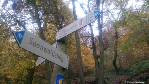 Wandern_20141103_Baumgeistertour_Rundweg_Tobias_023
