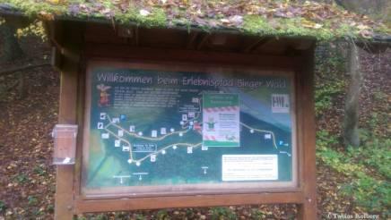 Wandern_20141103_Baumgeistertour_Rundweg_Tobias_026