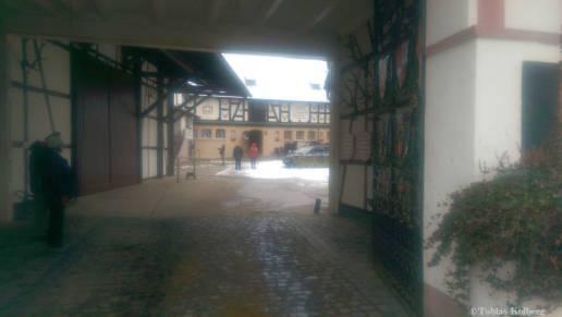 Wandern_20150125_Anwandern_2015_Rundweg_Tobias_017