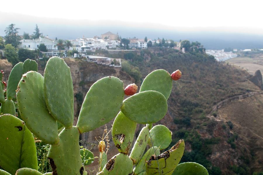 Great 8 day spain roadtrip itinerary - Ronda