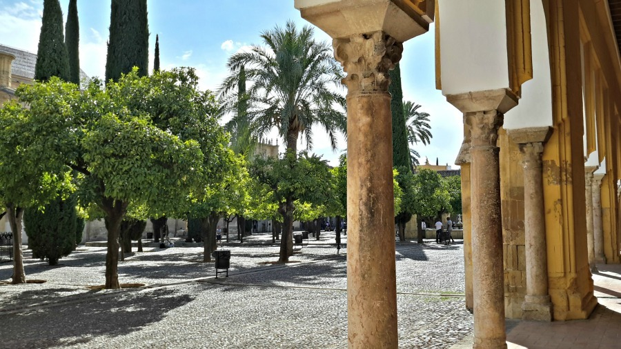 Patio de los Naranjos in beautiful Córdoba (Spain) is a great place to chill ar go to read