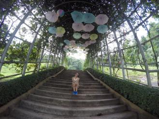 Lovely umbrellas at entrance of garden