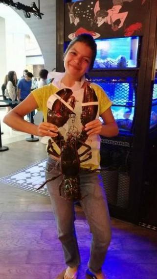 Big imported lobster