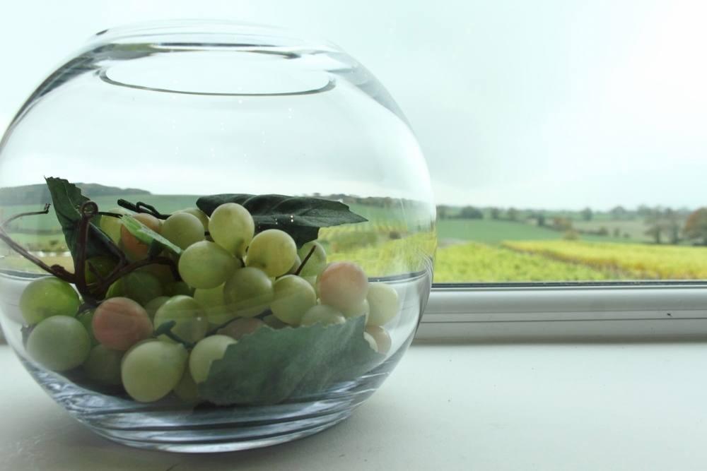 halfpenny green vineyard overview