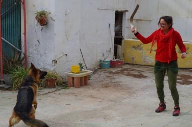 Antonia spielt mit Schäferhund Lilli