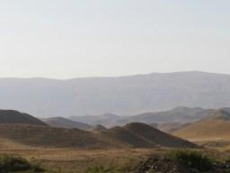Kamele oder Berge?// camals or mountains?