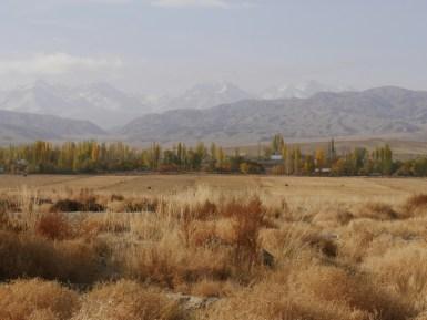 Kyrgyz Summer.