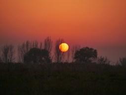 Sunset.// Sonnenuntergang.