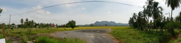 Rice fields, palms and hills. This is rural Malaysia.// Reisfelder, Palmen und Hügel. Das ist ländliches Malaysia.