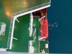 Rettungsboot.// Emergency boat.