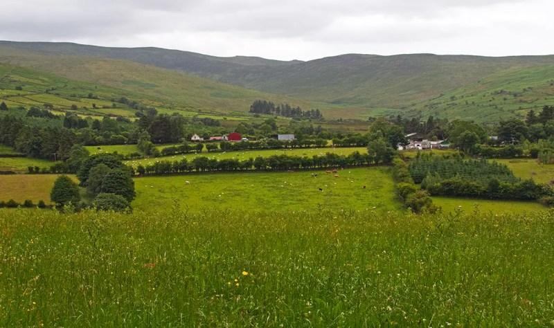 Valley and hills around Hanora's Cottage