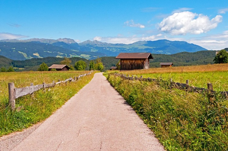 Road leading through high alpine meadow near Castelrotto, Italy