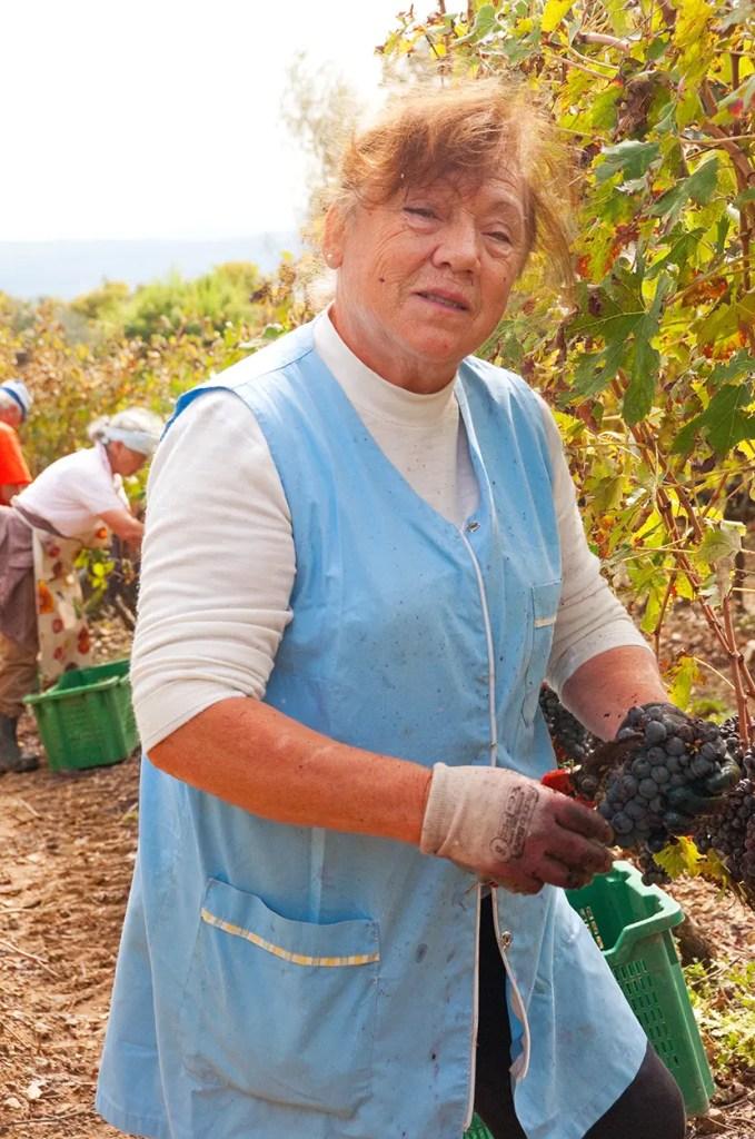 Nonna hard at work