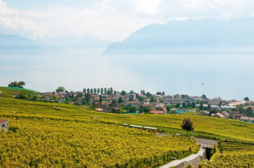 Views along the Terrasses de Lavaux trail