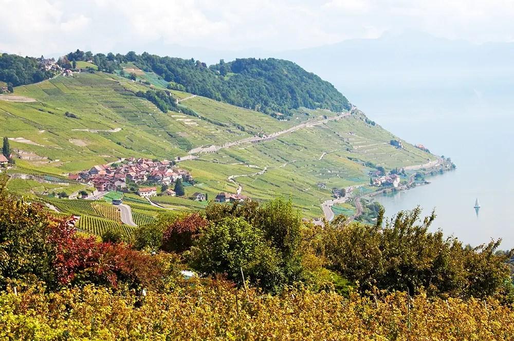 Views along the Terrasses de Lavaux trail