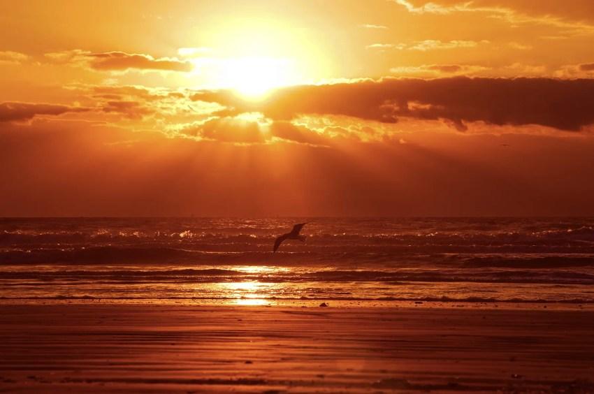 Sunrise, Florida