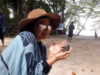 Ini bukan Tukik beneran lho... Tukik boongan yang dibeli di Pulau Derawan