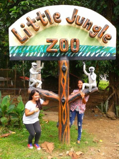 Little Jungle (4/6)