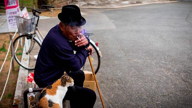 chat retraité