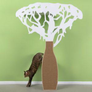 véritable arbre a chat