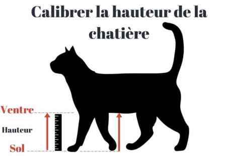 mesurer chat chatière