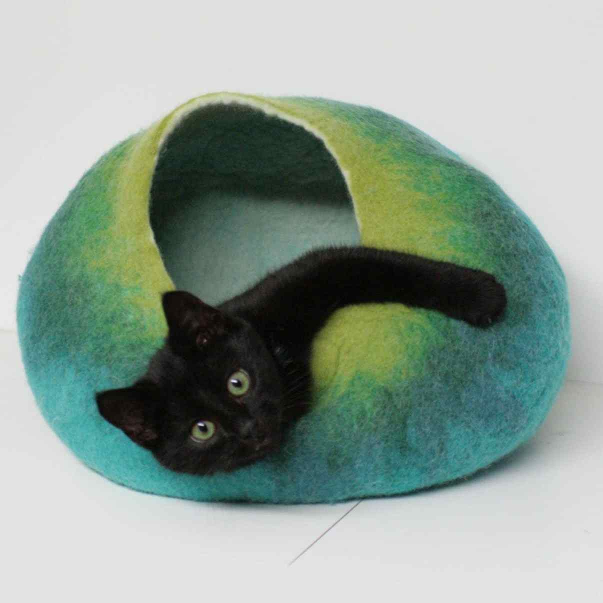 grotte chat bleu turquoise