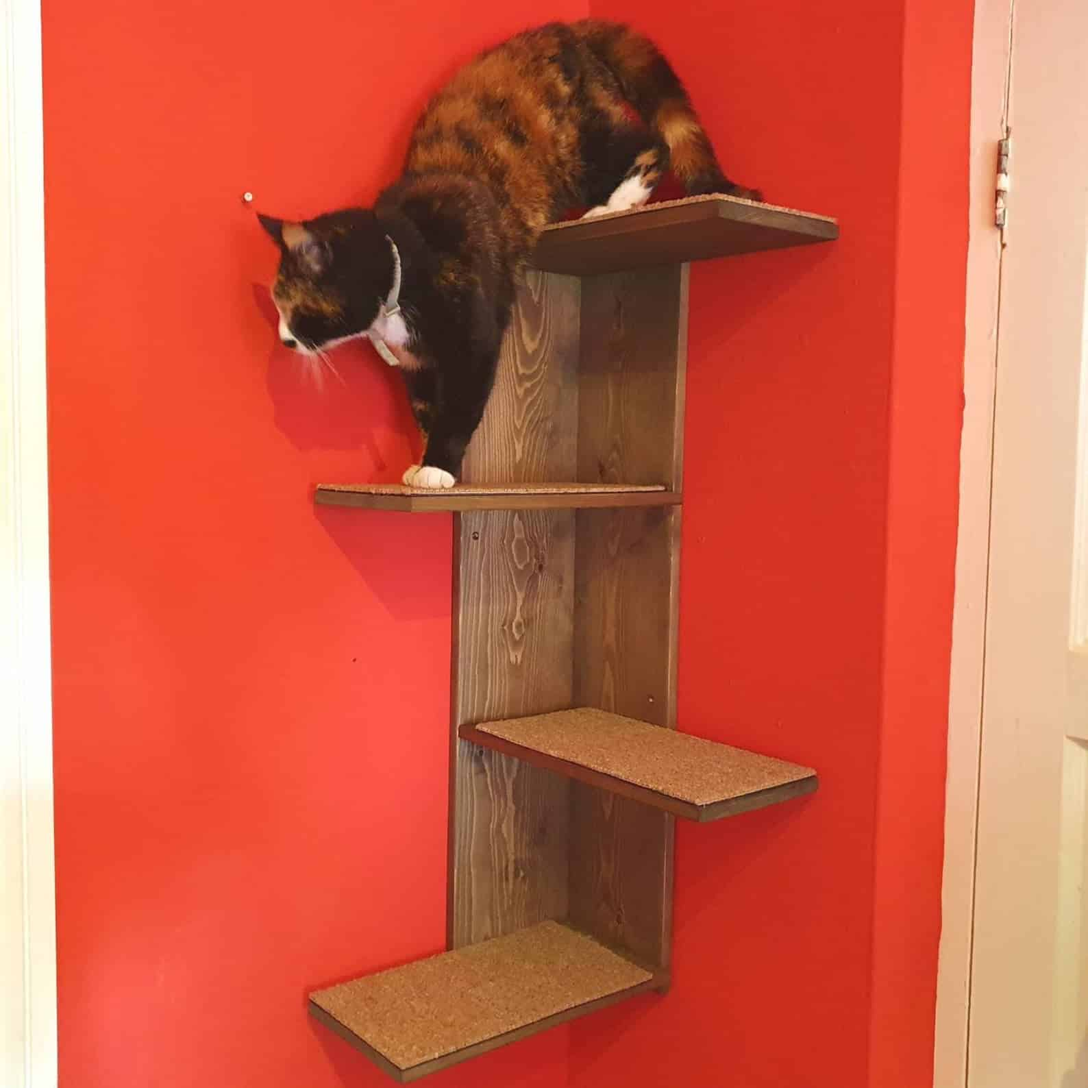 arbre a chat mural design planche bois