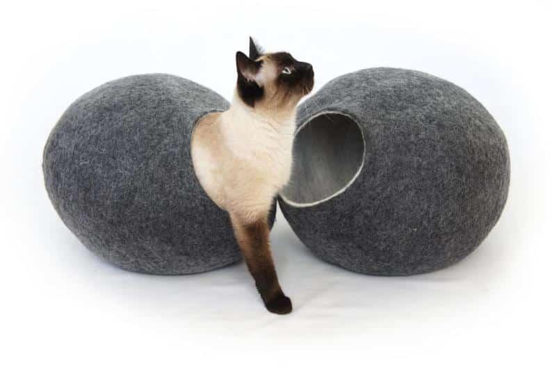 grotte chat classique