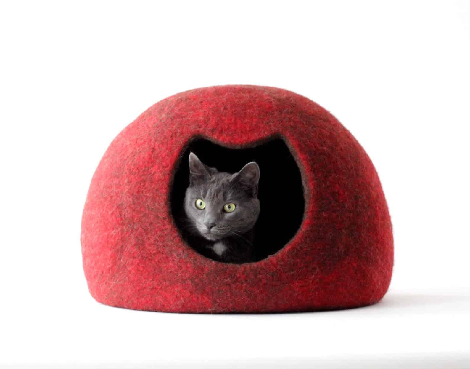 grotte chat rouge agnesfelt
