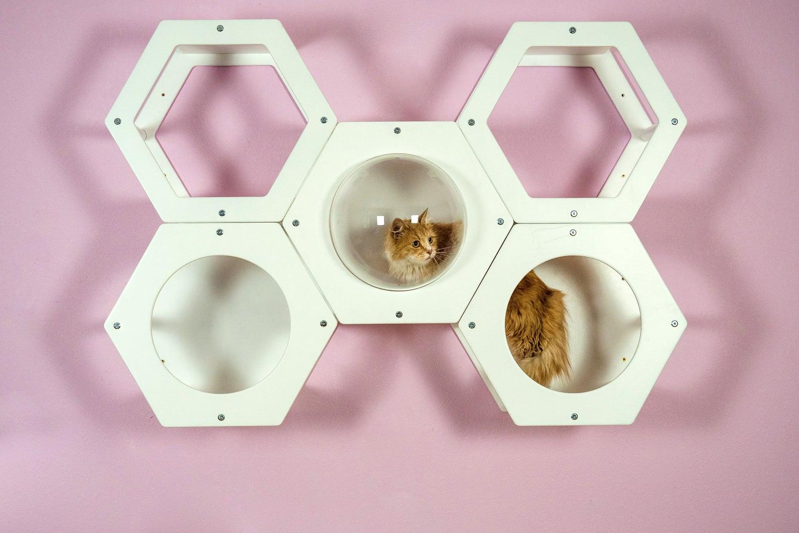 kit hexagone mural boule transparente
