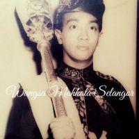 Tengku Aris Temenggong Selangor Ditauliah Sebagai Juruterbang