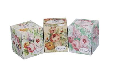 Facial Tissues Cube Box Elegant -80ct/36pk