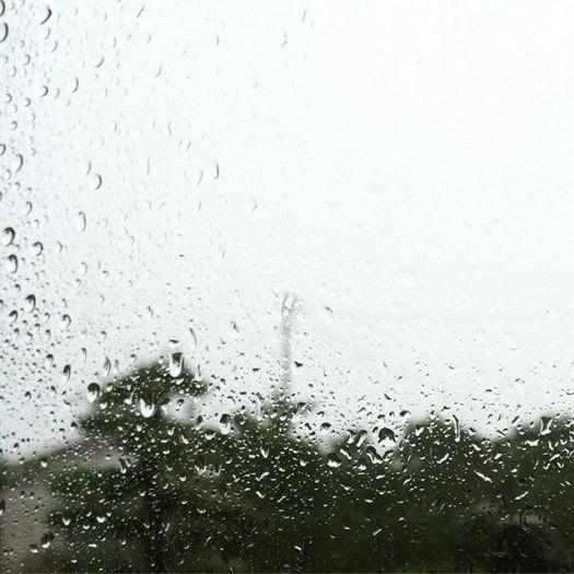高知帰省で台風直撃