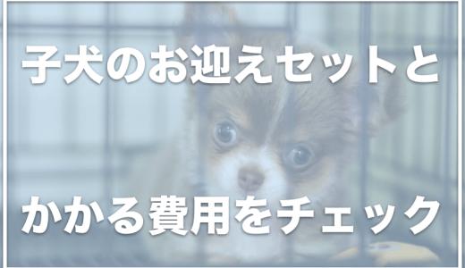 子犬のお迎えセット7選!お迎え準備をする場合の費用はいくらくらいかかる?