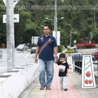 Breeze Walk Di Cameron Highlands Bersama Hadif